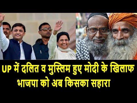UP में दलित व मुस्लिम हुए मोदी के खिलाफ, भाजपा को अब किसका सहारा