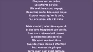La puce et le pianiste - Baptiste L - 06-03-2014