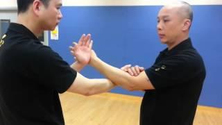詠春黐手基礎練習 1 Basic Chi Sau practice 1