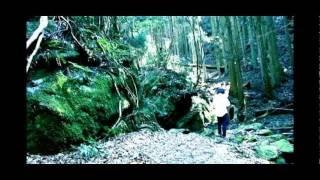 監督・脚本:田名網淳一 制作年:2009 【PVやライブ撮影、請け負います...