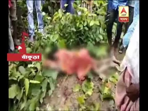 Woman died by attack of Tusker in Bishnupur of Bankura