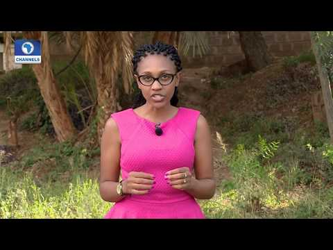 Eco@Africa: Climate Change Affecting Farming In Senegal