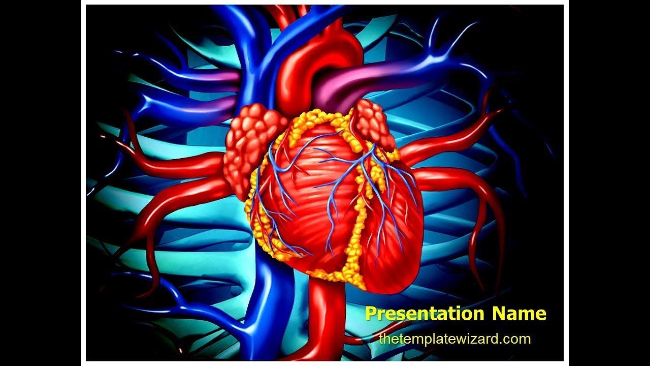 Heart Veins Anatomy Powerpoint Template Thetemplatewizard