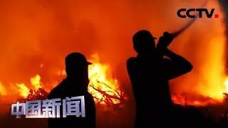 [中国新闻] 印尼6省遭遇山火 数千名消防员参与灭火 | CCTV中文国际
