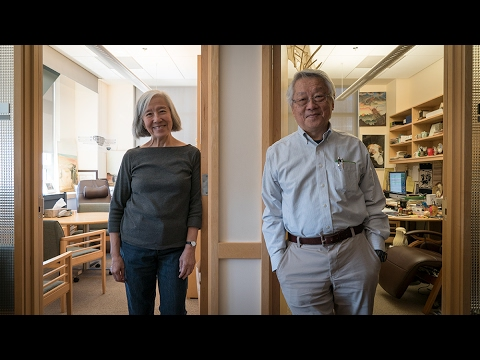 Lily and Yuh-Nung Jan: The Puzzle of Dendrite Development