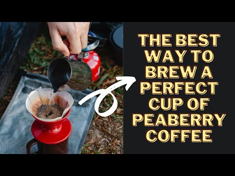 The Best Way To Brew A Perfect Cup Of Peaberry Coffee | COFFEE BUZZ CLUB