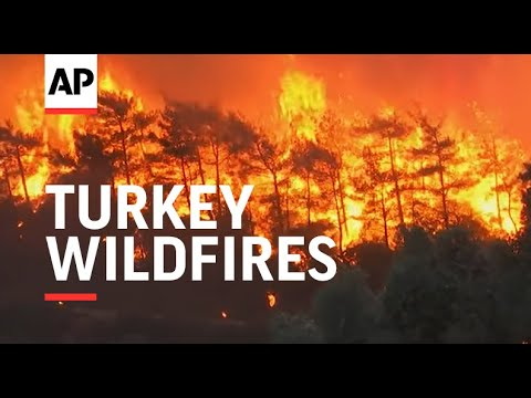 Wildfire that reached Turkish power plant contained