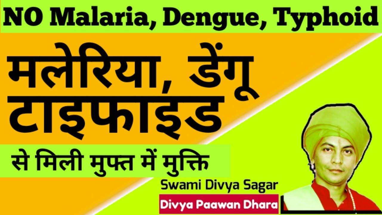 #typhoid #dengue #malaria #swami_divya_sagar #टाइफाइड #डेंगू #मलेरियासेमुफ्तमेंमुक्ति-रोहित
