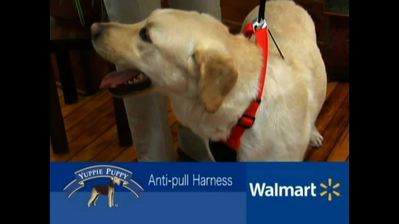 Yuppie Puppy Walmart Spot