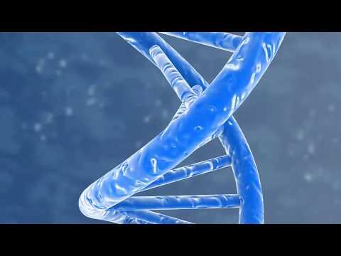 Tax Series Strengthening Your Organizational DNA