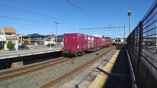 EF210牽引貨物列車(下り)相見駅通過&311系(上り)到着~出発まで