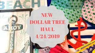 NEW DOLLAR TREE HAUL   April 24 2019