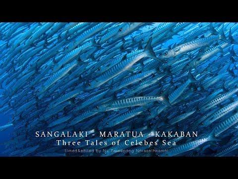 SANGALAKI - MARATUA - KAKABAN   Three Tales Of Celebes Sea