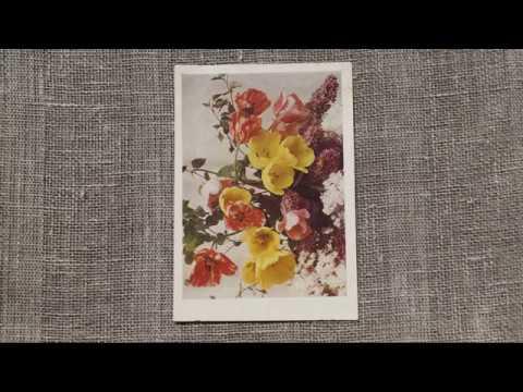 Открытки цветов - ФОТО ЦВЕТЫ И БУКЕТЫ ГДР