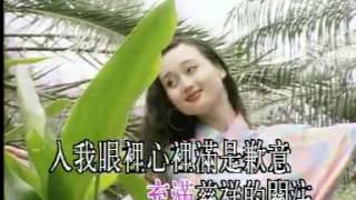 薰妮 - 故鄉的雨.flv