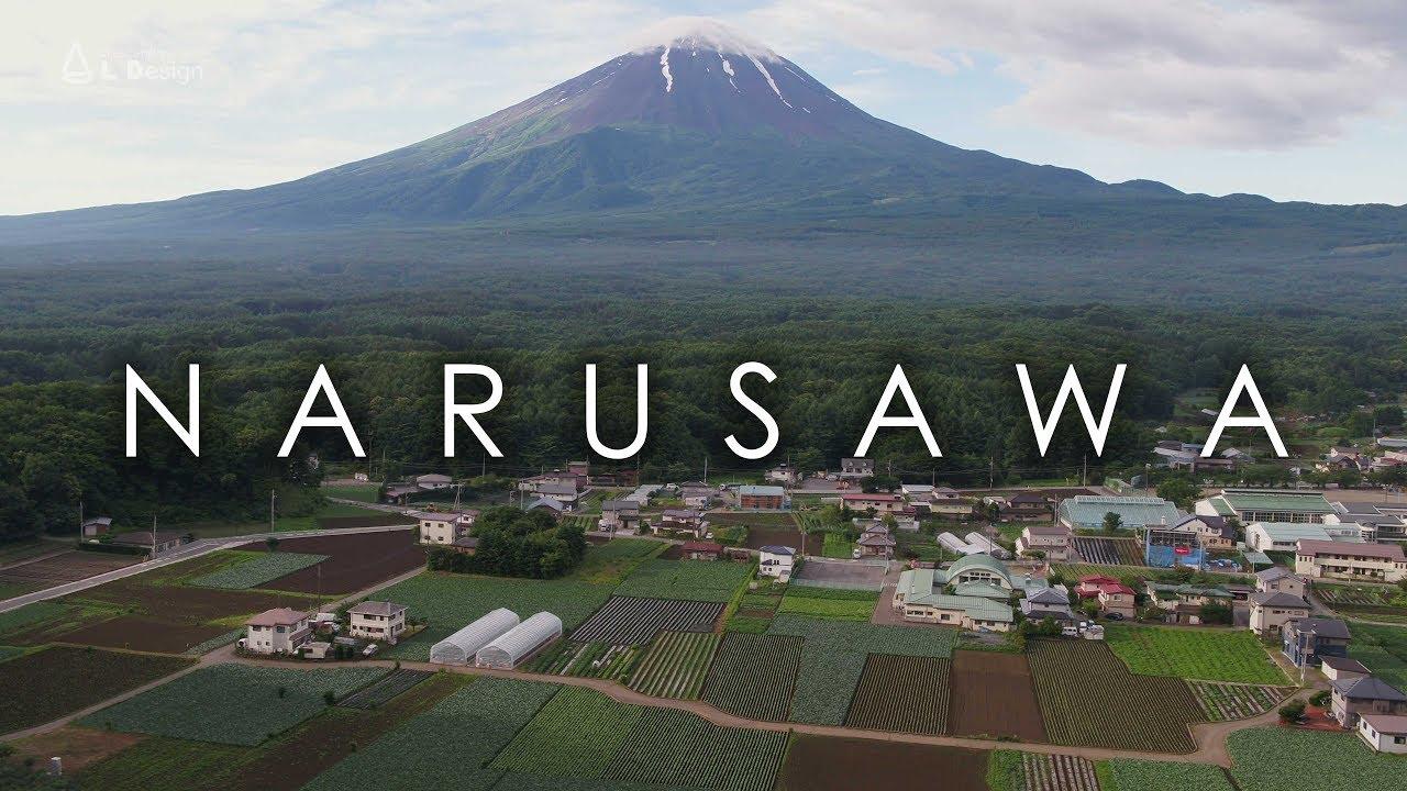 �������������������������� cabbage farm of narusawa