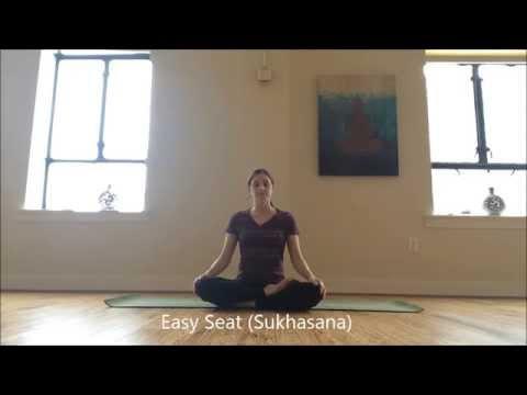 Yoga for Digestion Sampler Series | Episode 4