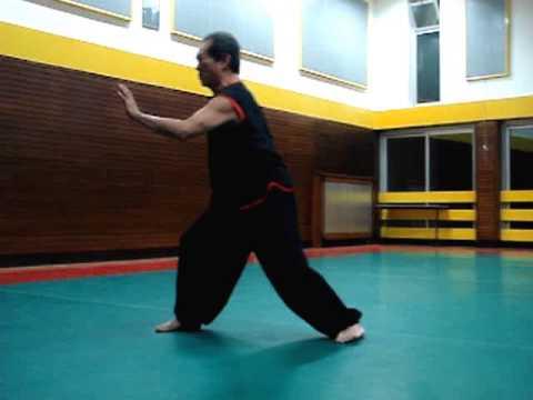 Shaoling Fu Yin Gong
