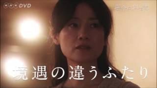 運命に、似た恋 DVD-BOX 全4枚セット」4月19日発売! PR動画を公開しま...
