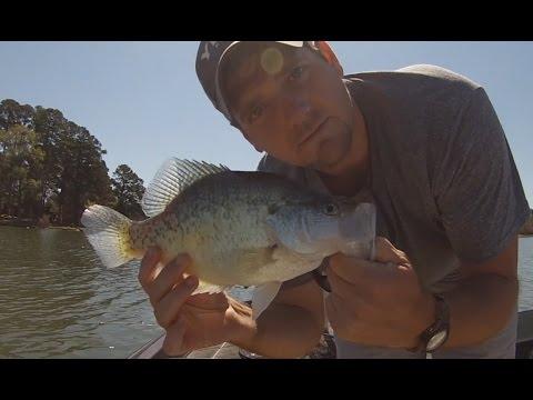 Spring Slab Crappie Fishing! Arkansas Crappie Fishing
