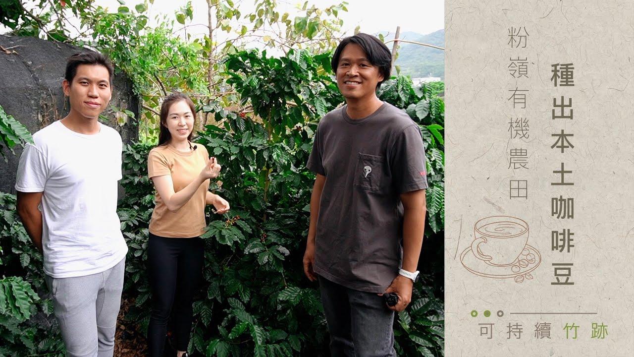 可持續竹跡 / EP04 港產咖啡豆