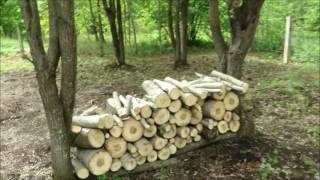 видео Начальные земельные и планировочные работы на участке