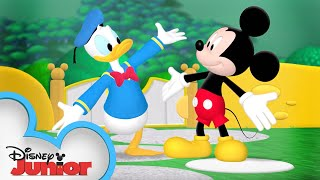 It's Donald Duck's Birthday! 🦆 | Mickey Mouse Clubhouse | Disney Junior