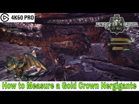 Monster Hunter: World - How to Measure a Gold Crown Nergigante