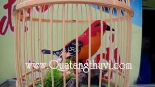 Lồng chim điện tử cảm ứng - Giá : 150.000đ | www.deva.vn