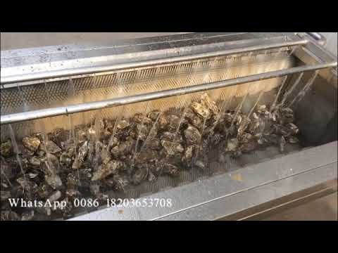 automatic oyster washing and cleaning machine/shellfish washing machine