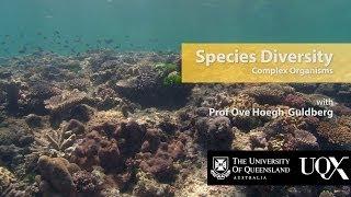 UQx TROPIC101x 2.1.3 Species Diversity: Complex organisms