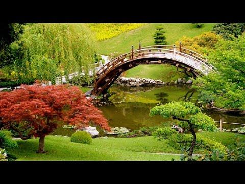 Relaxing Japanese Music - Japanese Garden