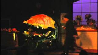 Little Shop of Horrors. The song is Suppertime Starring Paul-Dean Martin as the voice of the Plant