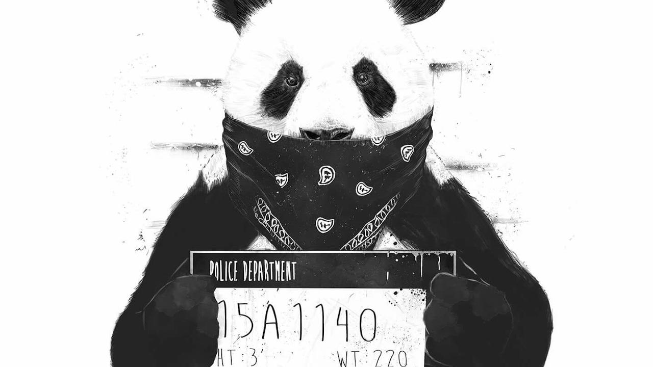 Transmisión En Directo De The Thug Panda Gamer Youtube