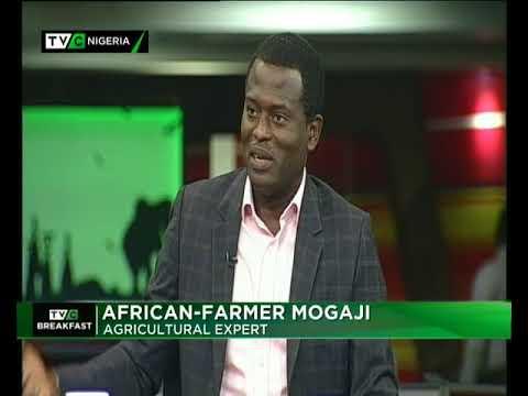 TVC Breakfast 5th April 2018   Rice Revolution: Nigeria accuses Neighbours