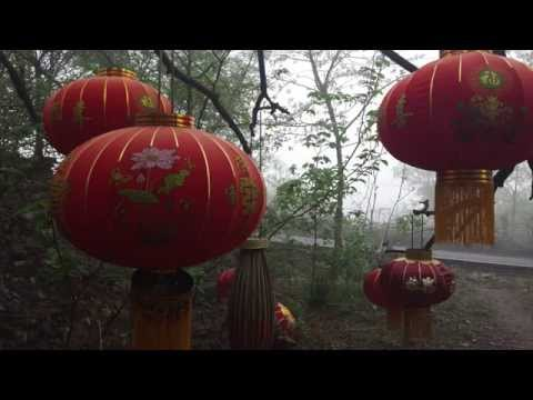 Wushu Teaser