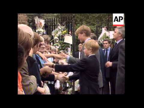 UK - Princes Meet Crowds At Kensington, Queen's Walkabout At