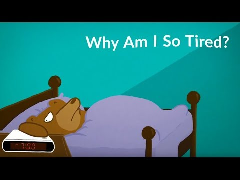 why-am-i-so-tired?-(all-the-time)