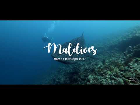 Manta Cruise Maldives - Central Atolls from 14 to 21 April 2017
