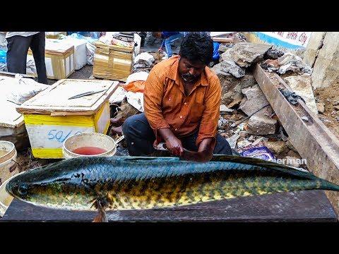 Live Fish Cutting Skills In Indian Fish Market | Fisherman
