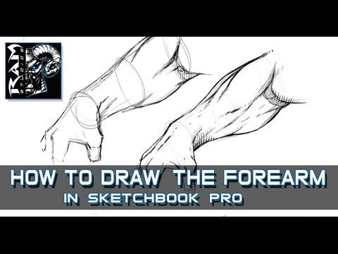 How to Draw Forearm Muscles - In Sketchbook Pro - Narrated by Robert Marzullo