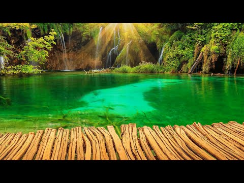 3 Hours Relaxation And Meditation At This Beautiful Place Youtube