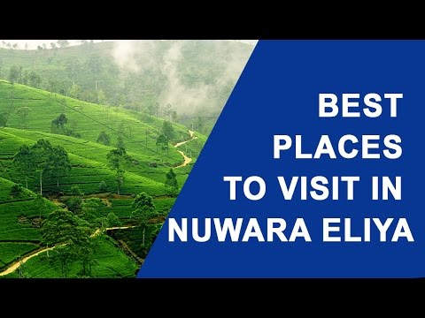 best-places-to-visit-in-nuwara-eliya-sri-lanka