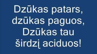 Dzūkija + žodžiai thumbnail