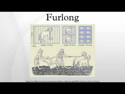Furlong   YouTube
