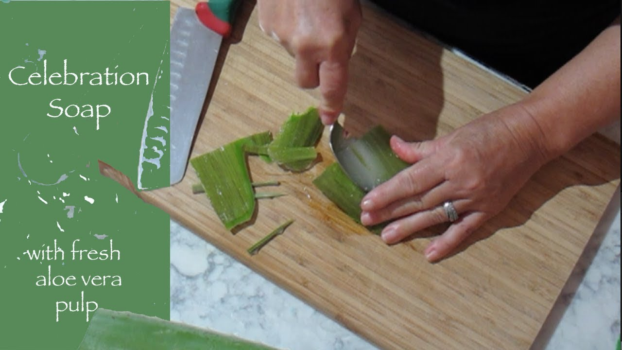 Making A Soap With Fresh Aloe Vera Pulp Youtube