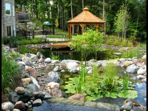 Natural Swimming Pool - Loretto, ON