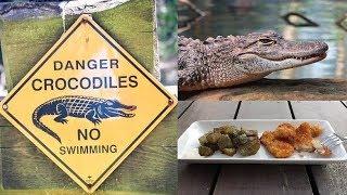Deep Fried Crocodile recipe