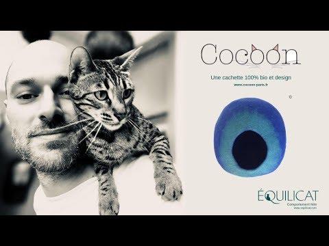 Cocoon Paris, Design Pour Chats