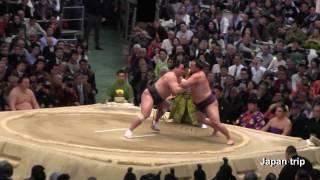 2017年大阪場所での日馬富士vs蒼国来の取組。3日目で早くも日馬富士は2...
